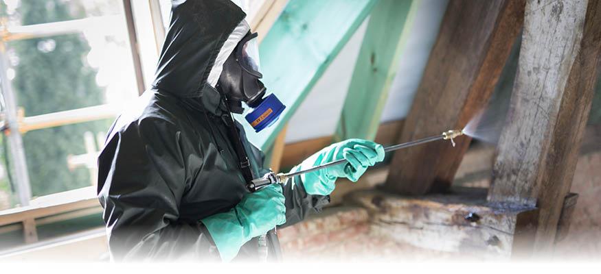 Slider-pestcontrol-3